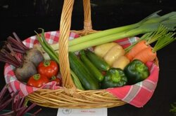 Witherslack Vegetable show